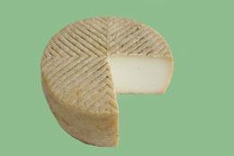 queso-uga-mediaflor.jpg