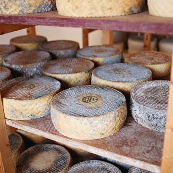 quesos-majoreros-dop1